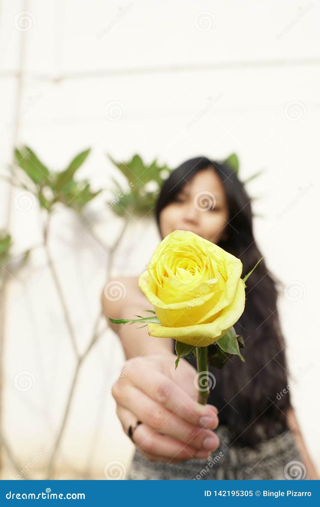 W górę kolor żółty róży kwiatu w dziewczyny ręce