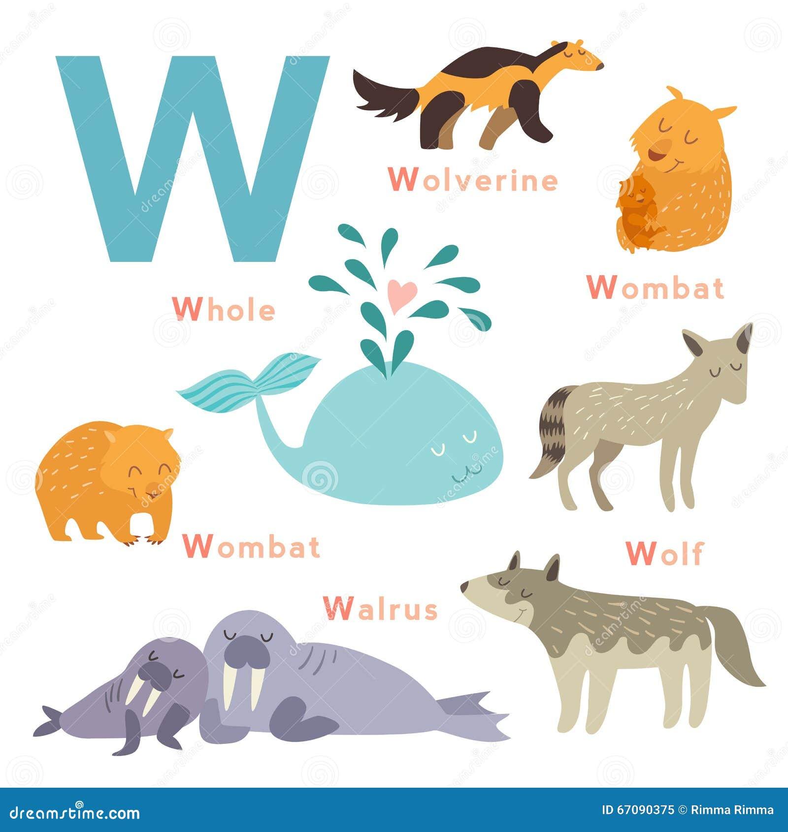 Animals Name Letter I