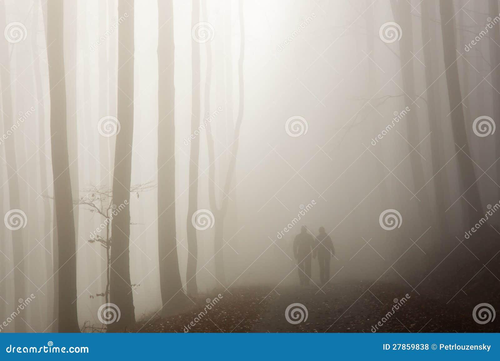W mglistym lesie pary odprowadzenie