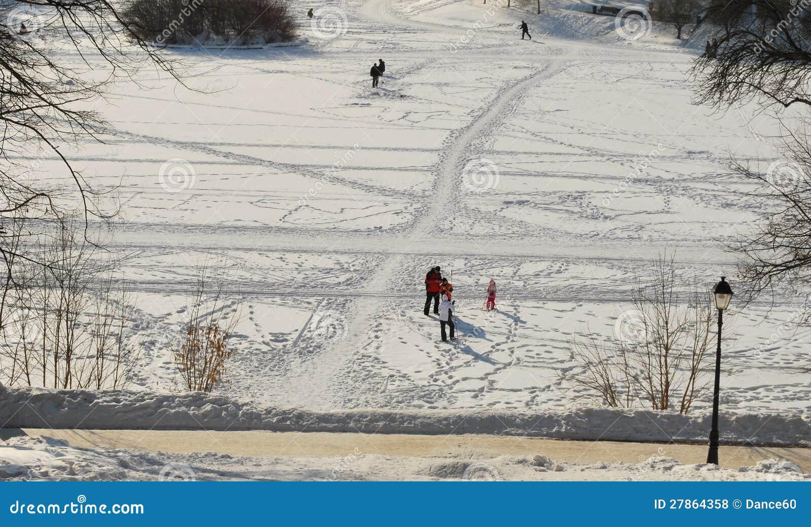 W parkowym Tsaritsyno zima dzień