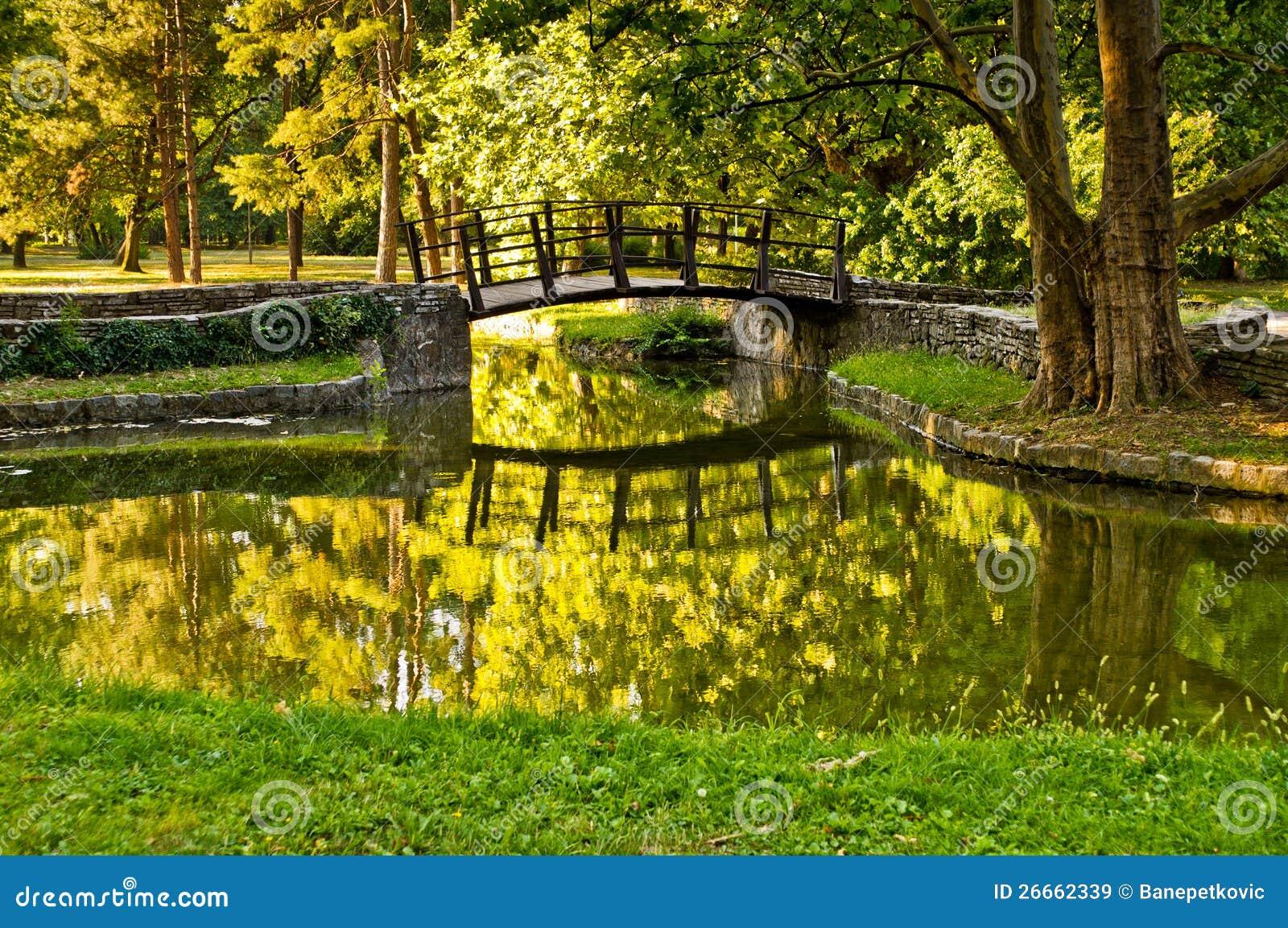 W parku drewniany most