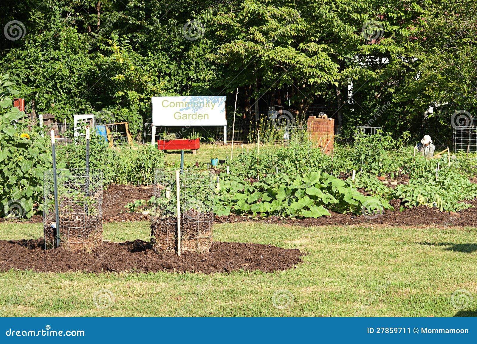 W Społeczność Ogródzie ochotnicze Pracy