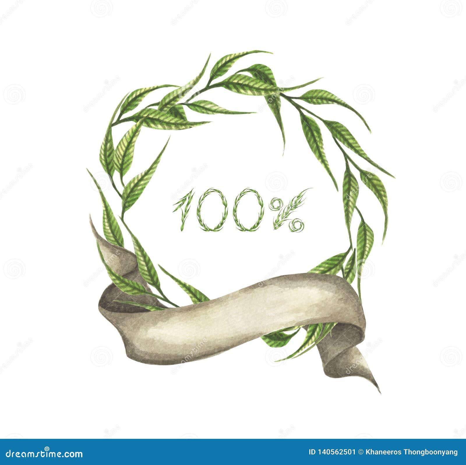 100  w zielonym liścia wianku z faborkiem beak dekoracyjnego latającego ilustracyjnego wizerunek swój papierowa kawałka dymówki a