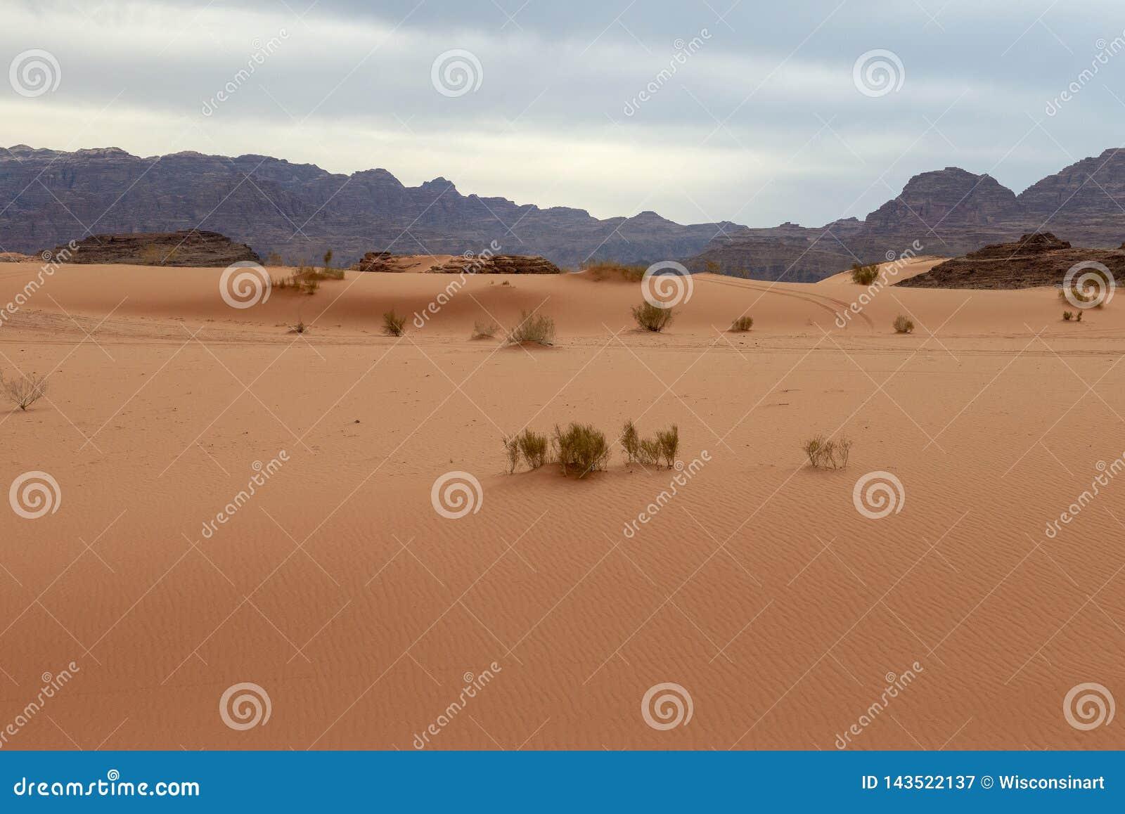 Wadi Run Desert, Jordan Travel, natureza
