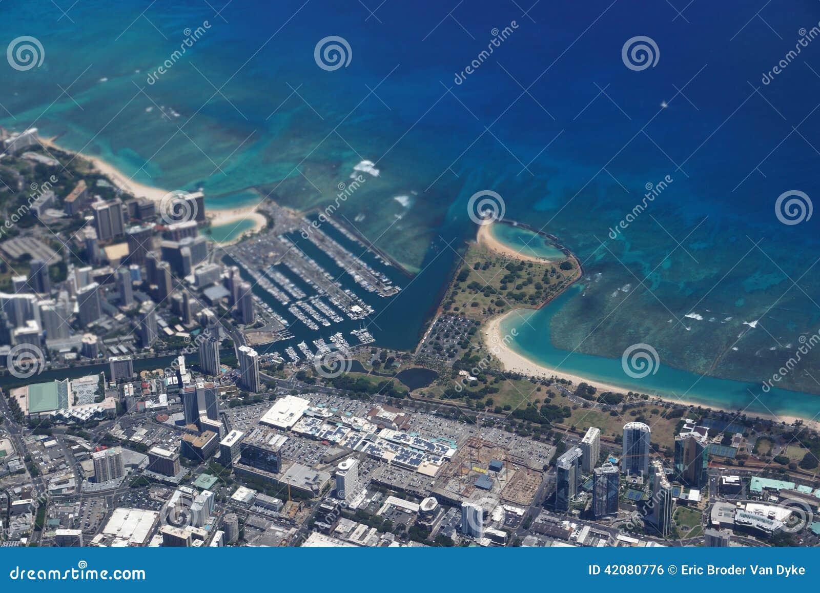 Frangipani spa flowers stock photo image 14654190 - Waikiki Ala Wai Canal Ala Moana Mall Park And Ocean Stock Photo