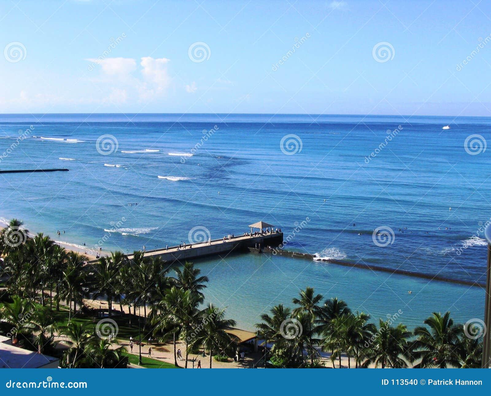 Download Waikiki Pier stock photo. Image of relaxation, palmtrees - 113540
