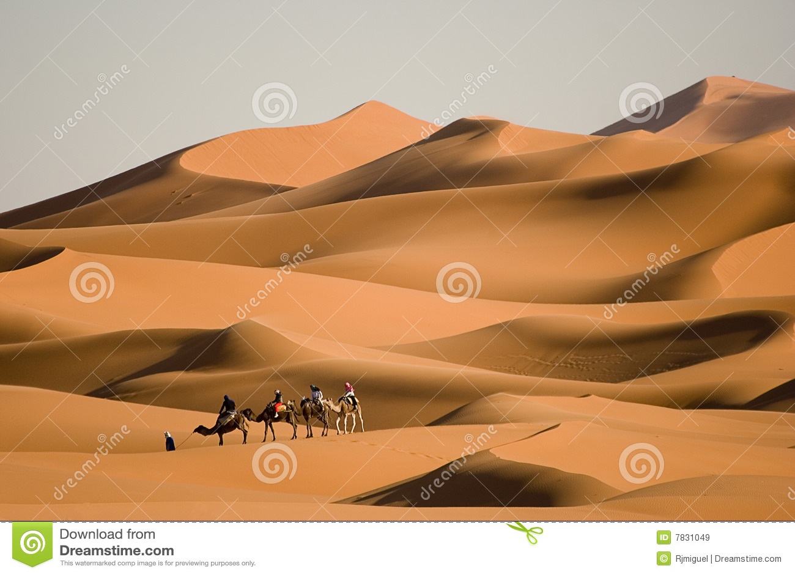 Walk in the desert