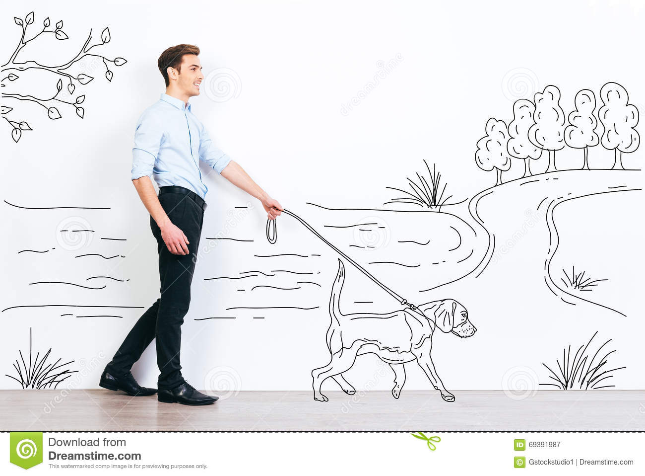 Dog Walk Diagram - Block And Schematic Diagrams •