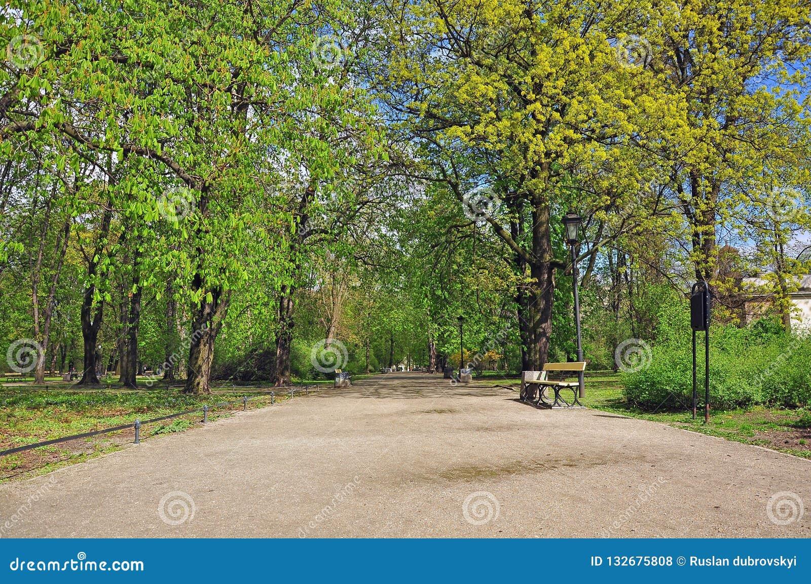 Walk in the spring park.