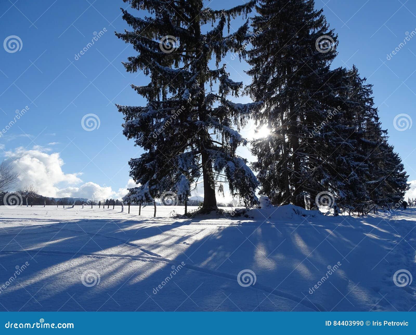 Walk on Wackersberg