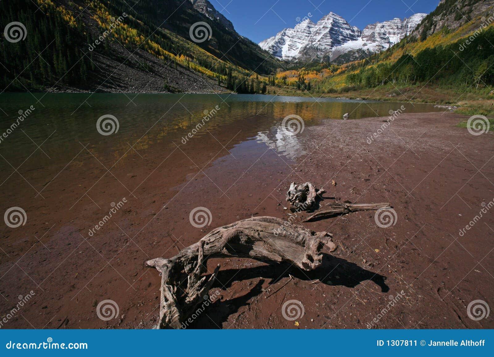 Download Walking along lake shore stock image. Image of clear, reflection - 1307811