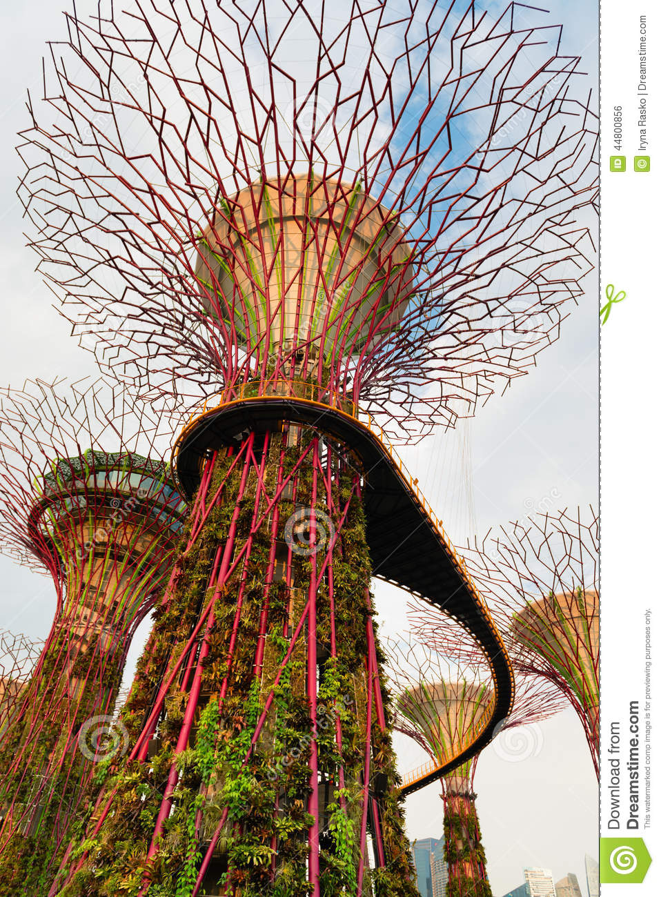 Walking Bridge On Super Trees In Gardens By The Bay Singapore Stock ...