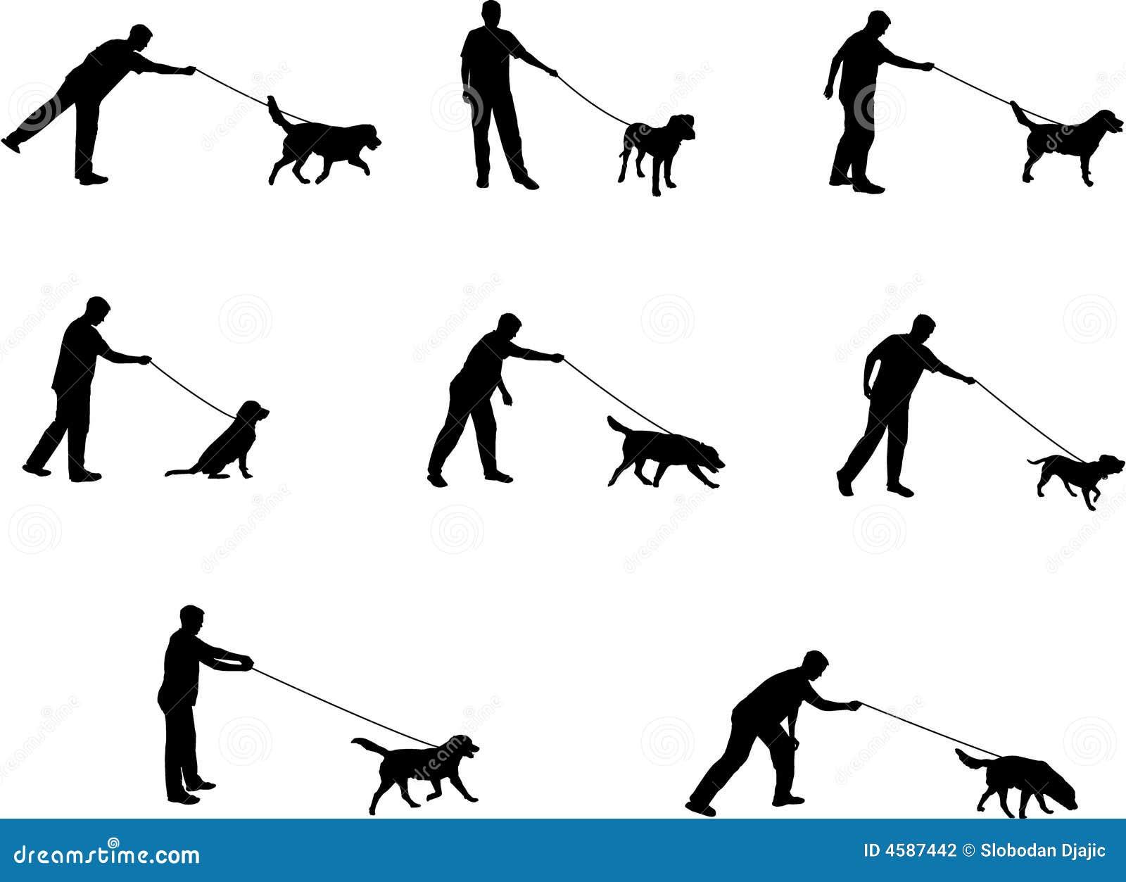 Dog Walking Jobs Carnegie