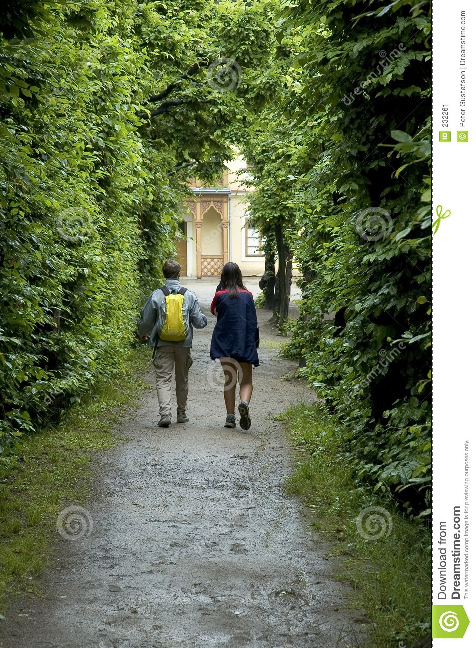 """pamela is walking through a forest """"i remember walking through the forest, you wouldn't hear anything but the sound  of your own feet,"""" pamela says """"now, the place is alive with."""