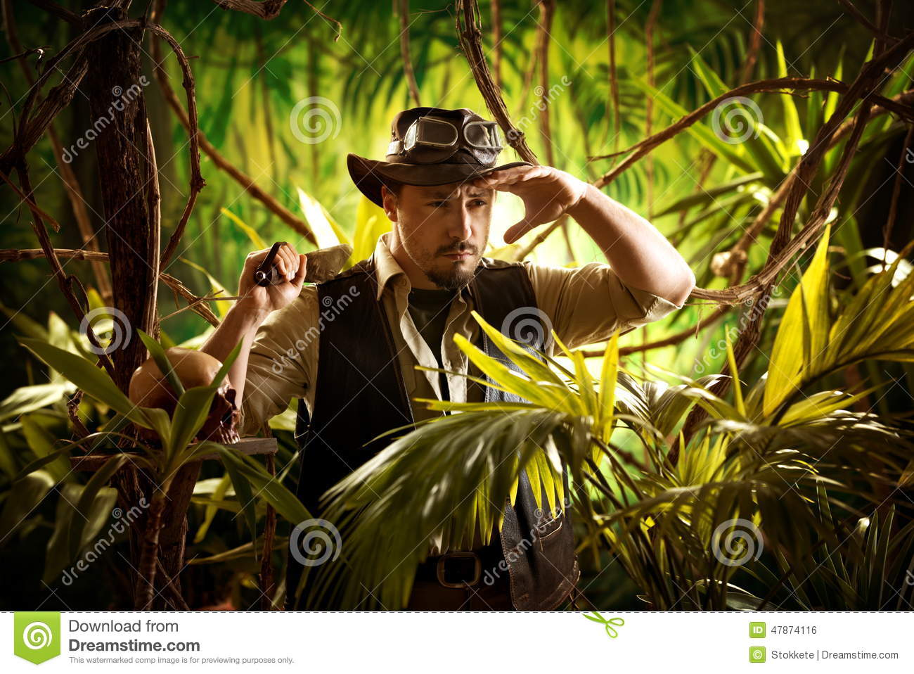 Walking In The Jungle Stock Photo