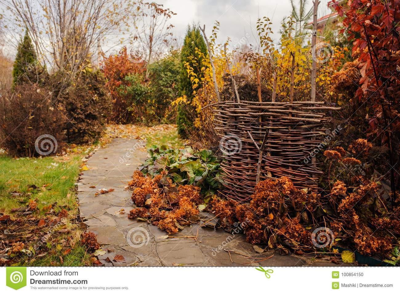 Walking in november garden. Late autumn view with rustic fence