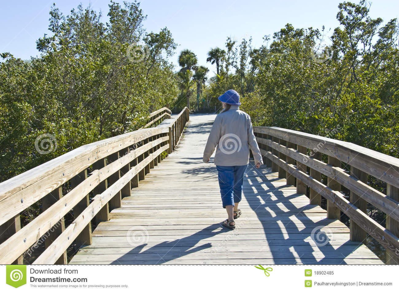 Walking Over Bridge Royalty Free Stock Photo Image 18902485