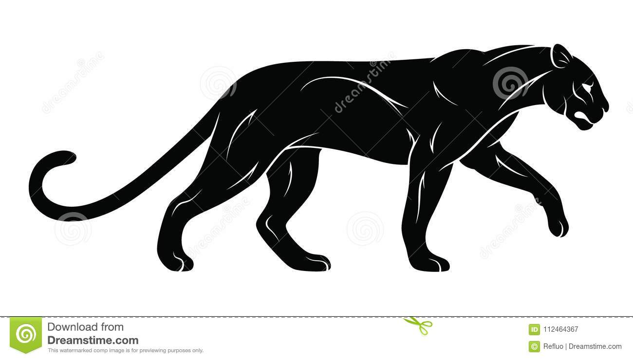 walking panther stock vector illustration of standing 112464367