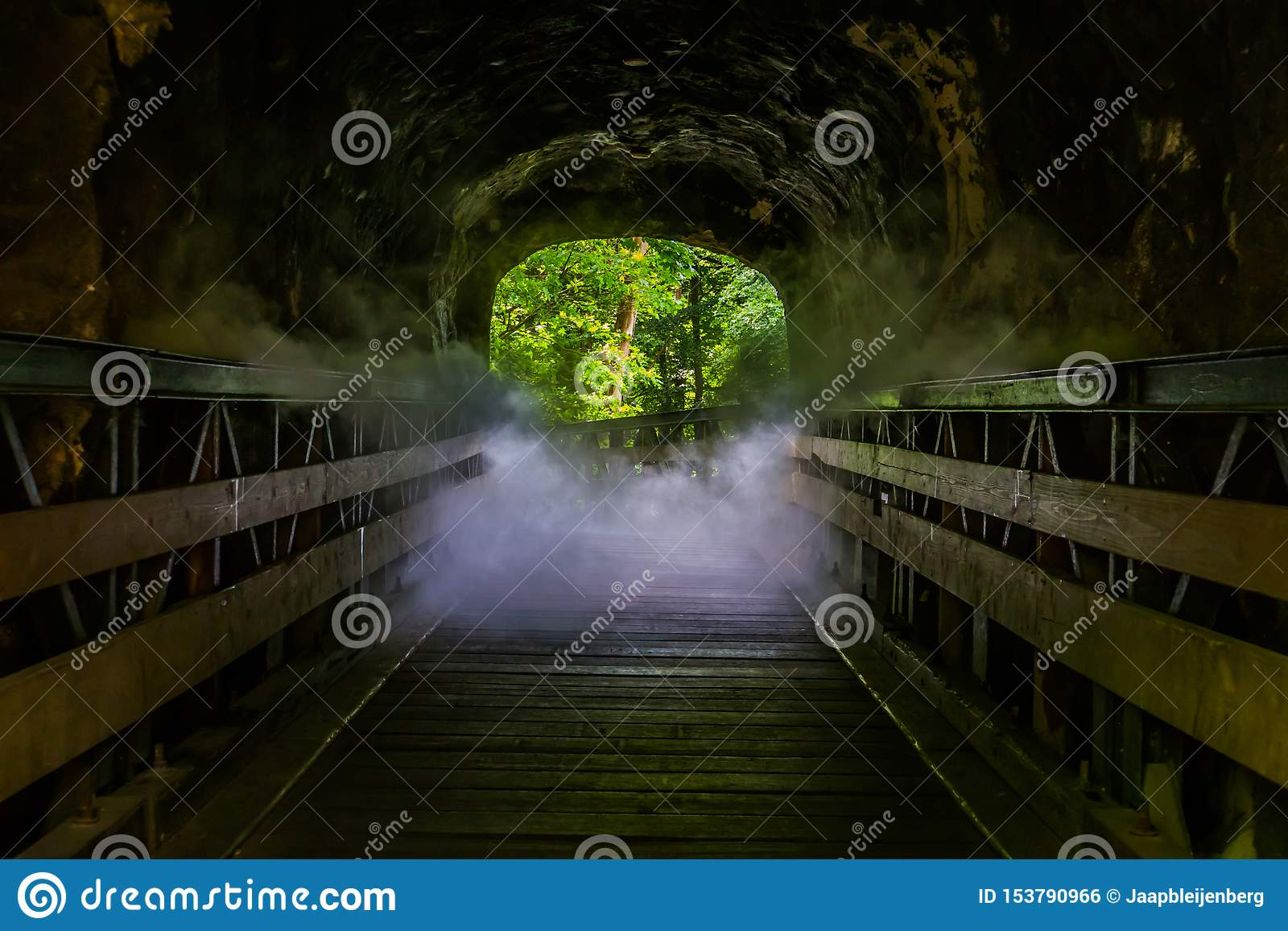 Walking path with scary smoke effect, creepy looking halloween cave, misty den, horror scenery
