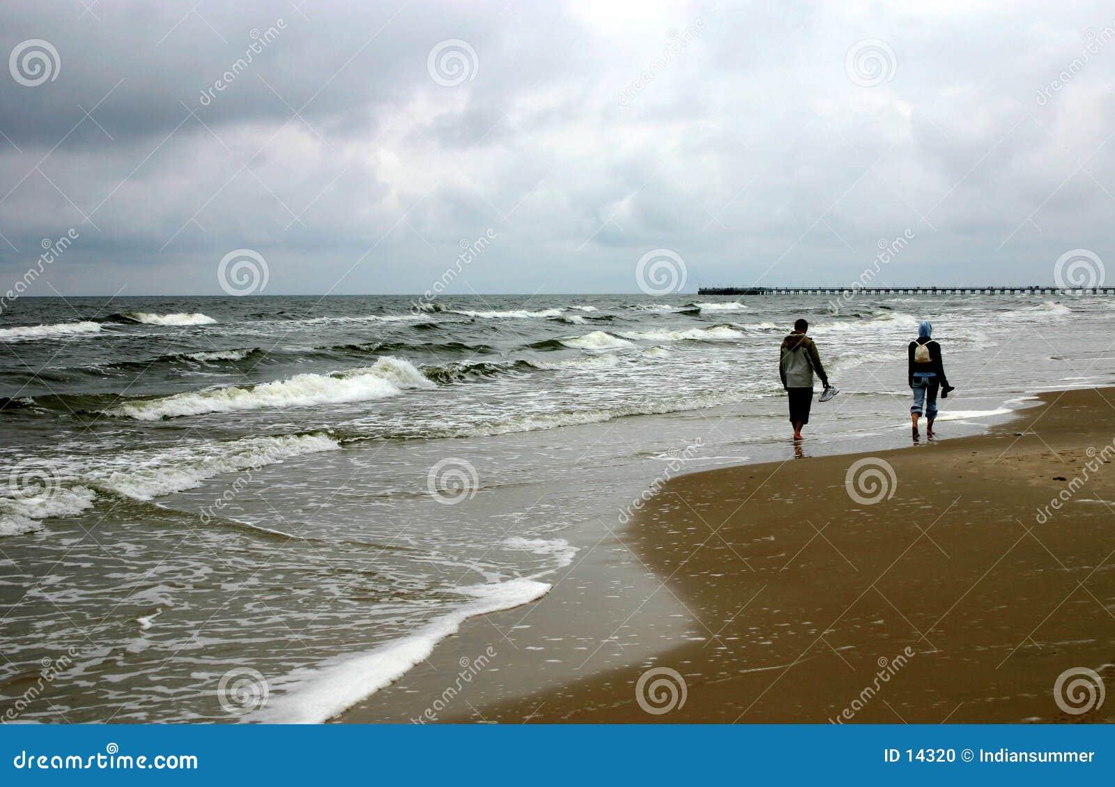 Walking by the seacoast, II