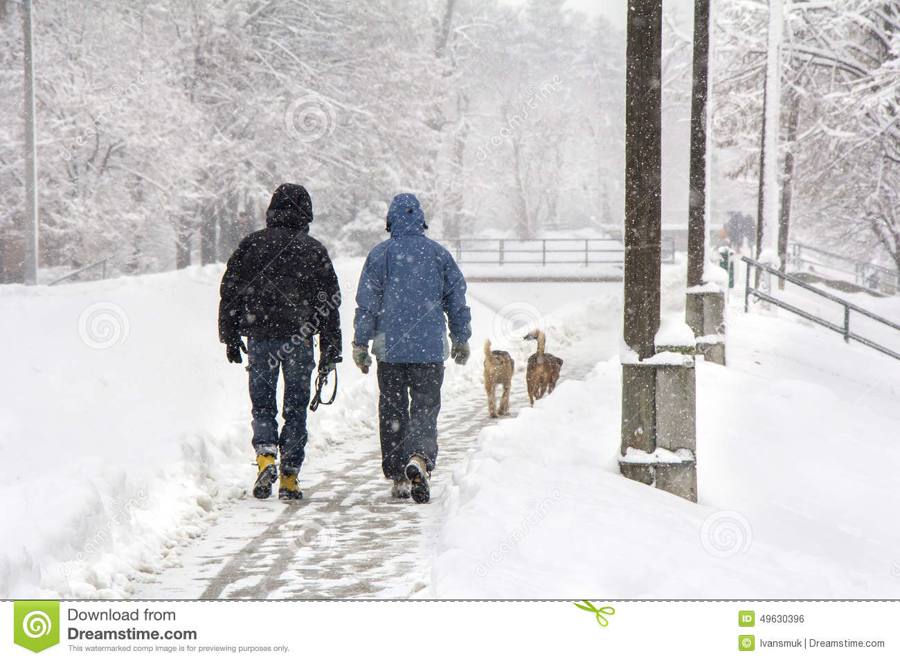 walking in the snow - photo #8