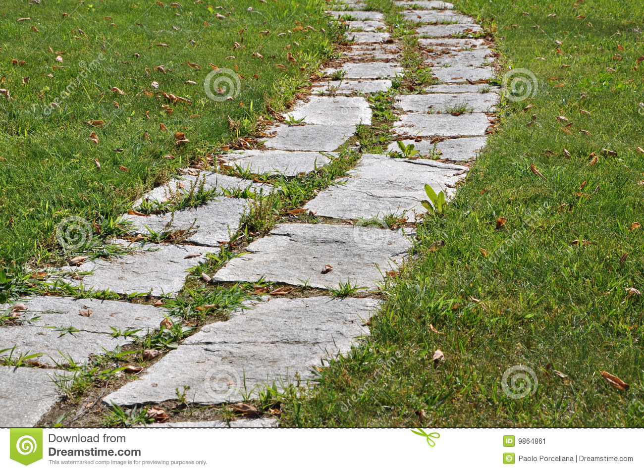 Walking On A Stone Path Garden Stock Image   Image Of Garden, Direction:  9864861