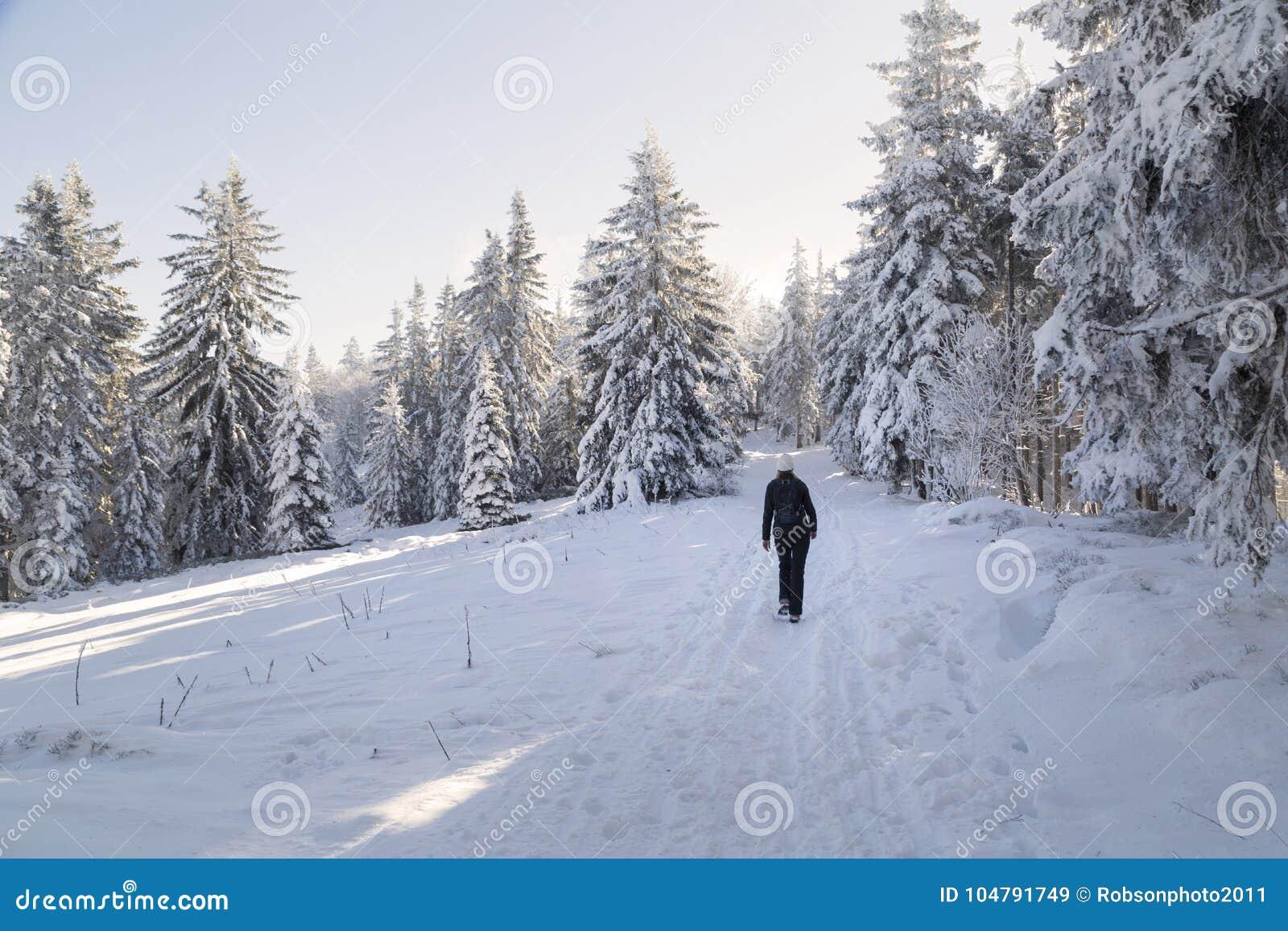 Walking on a sunny snowy landscape
