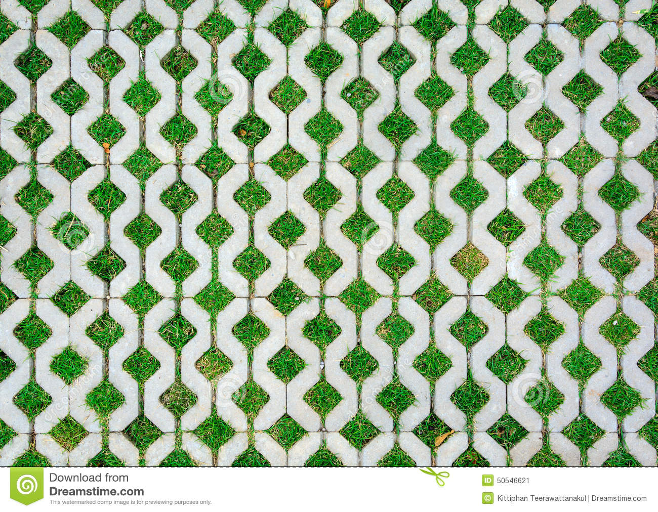 Walkway Cement Brick With Green Grass Stock Photo Image