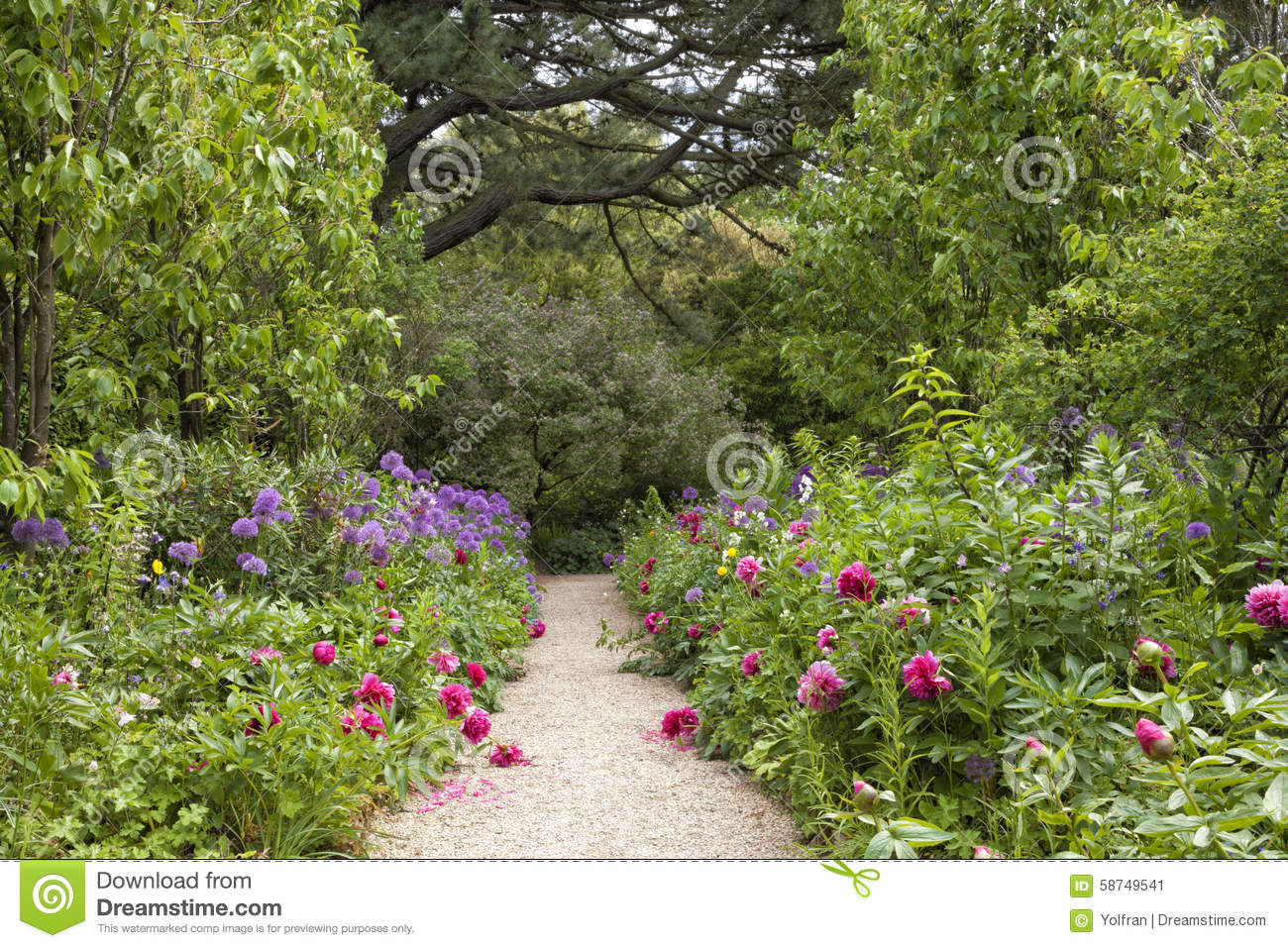Walkway in english summer flowering garden stock photo for Flowering landscape plants