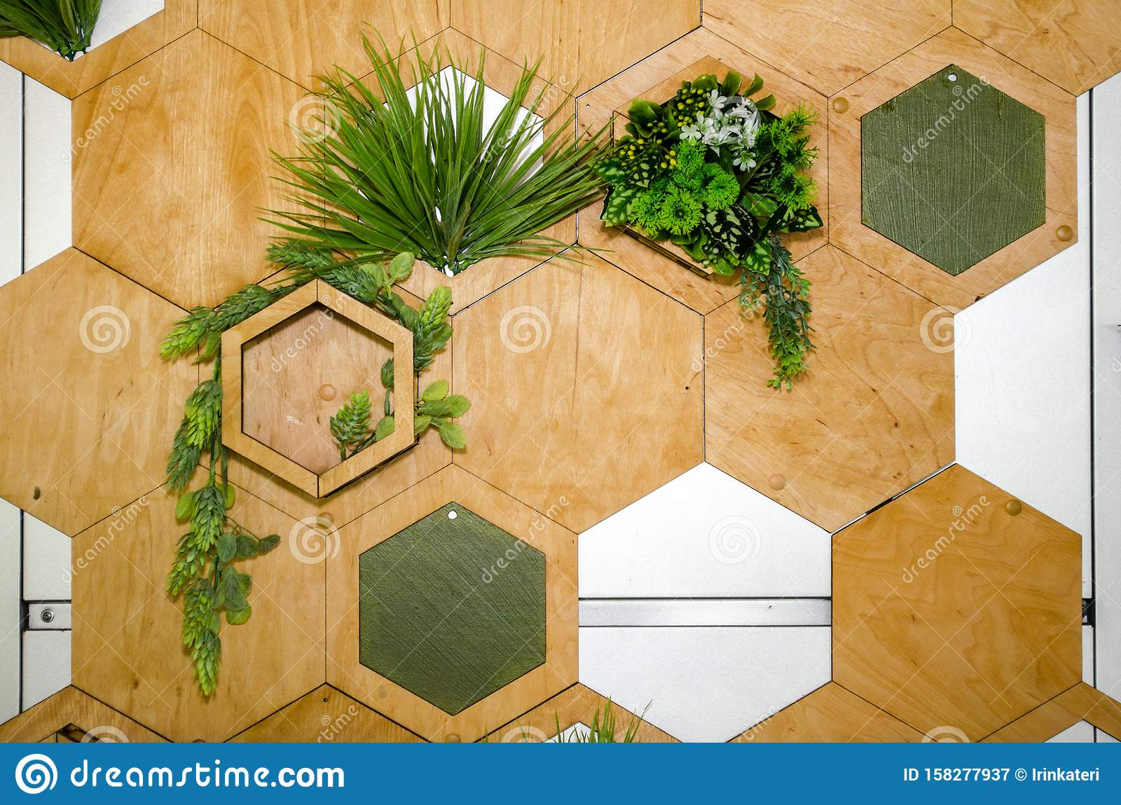 Wall Decor Hexagonal Wood Panels With Plants In Them Stock Image Image Of Decoration Indoor 158277937
