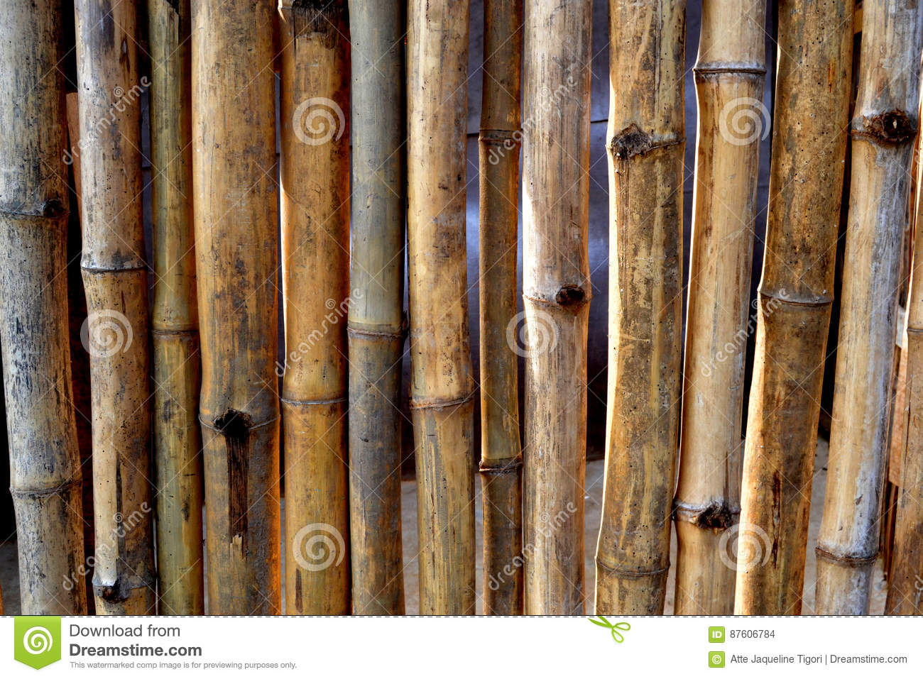 WALL AND DRY BAMBOO BARRIER