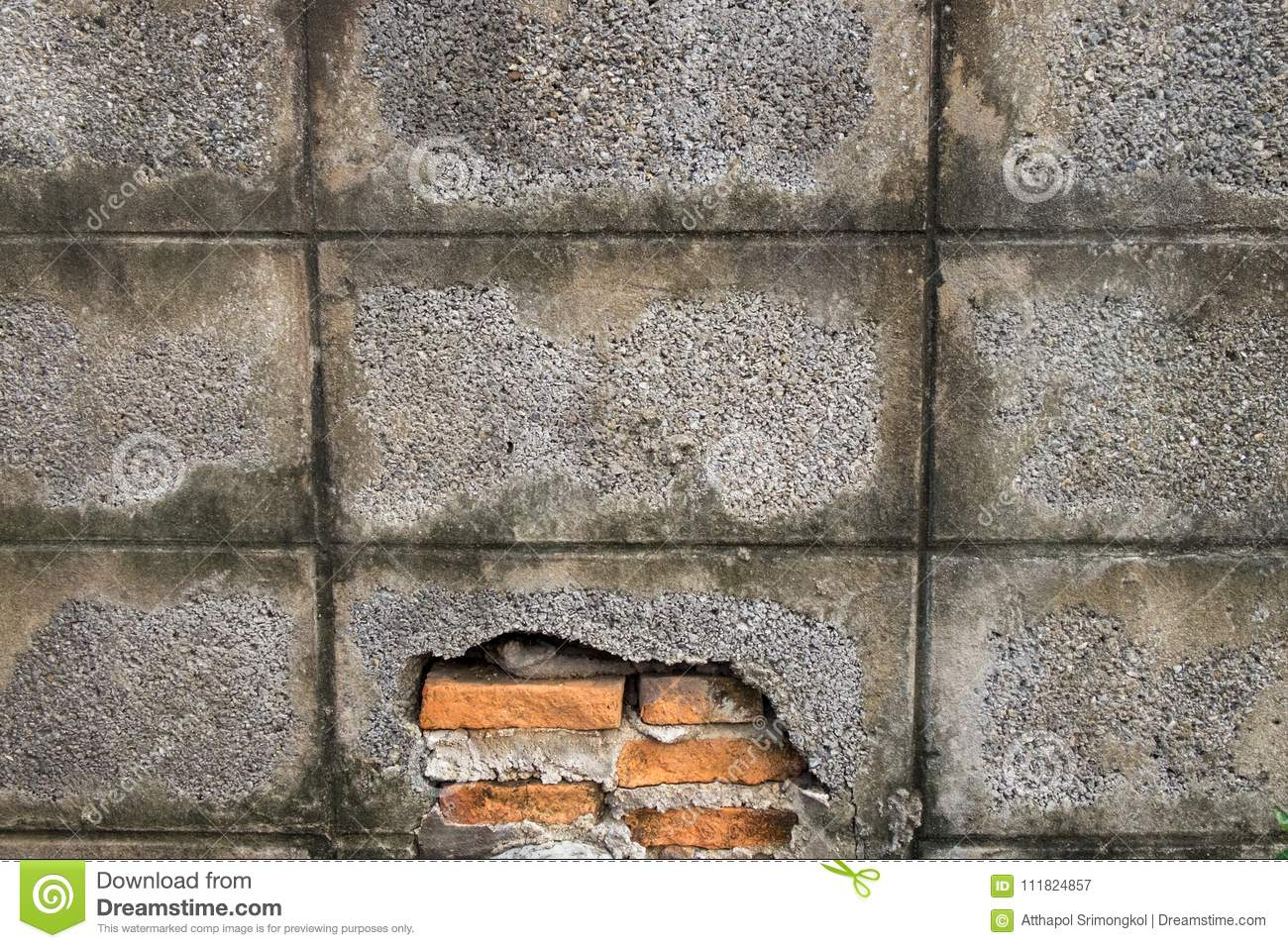 Wall Made Of Concrete Blocks Do Not Paint Over The Plaster