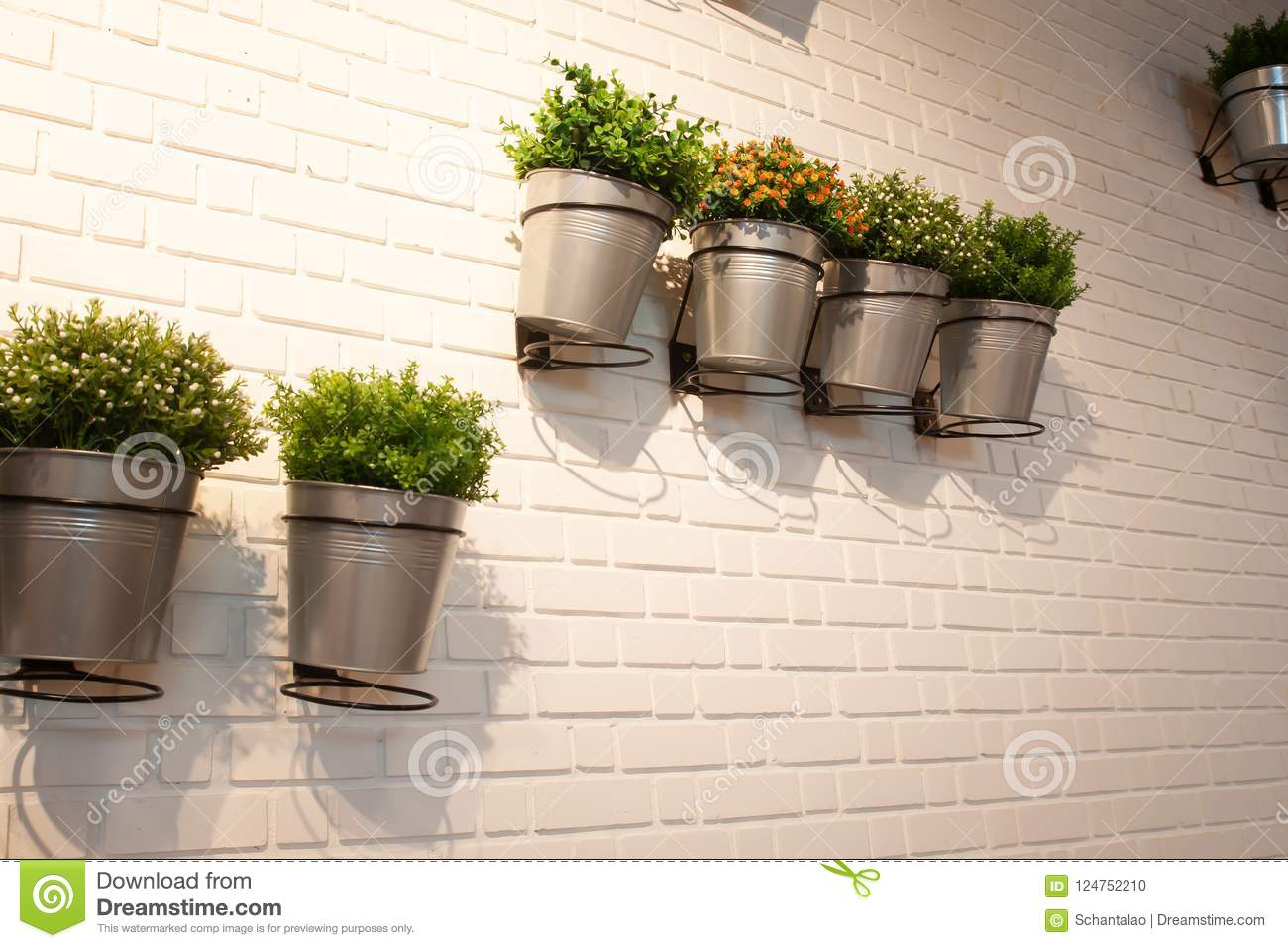 Wall In Modern Interior With Little Garden Pot Plant Stock Photo