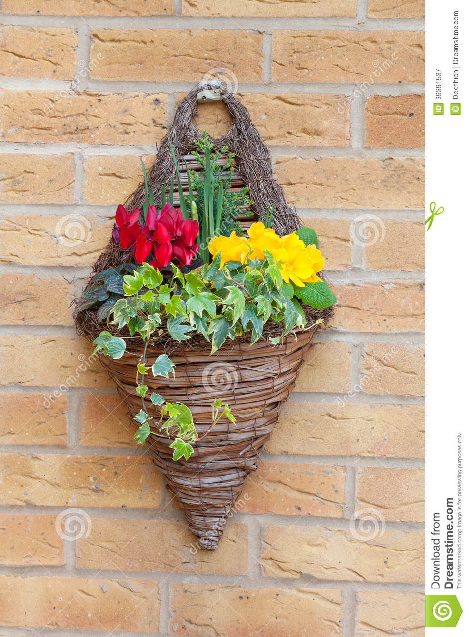 Wall Mount Flower Basket : Wall mounted hanging basket with spring flowers stock