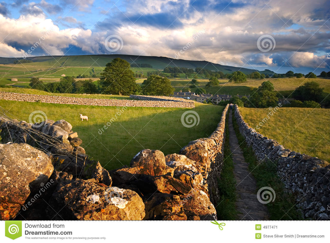 Walled Yorkshire path