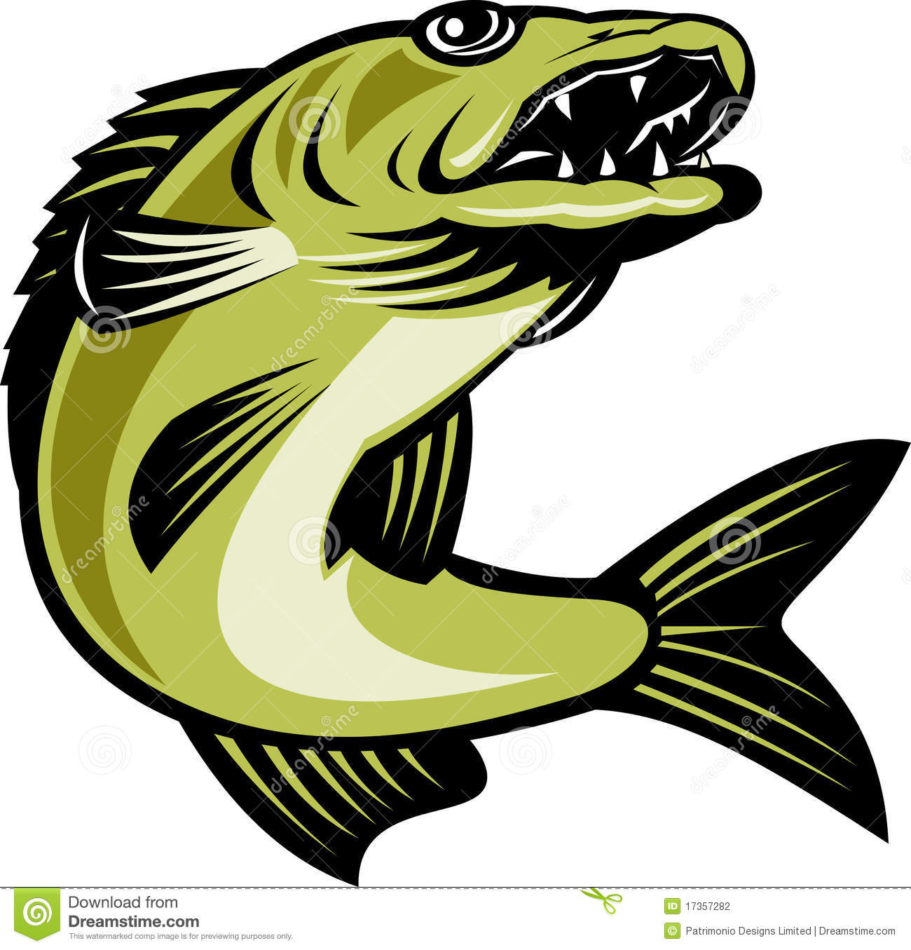 walleye stock illustrations 301 walleye stock illustrations rh dreamstime com walleye clipart free walleye clipart free