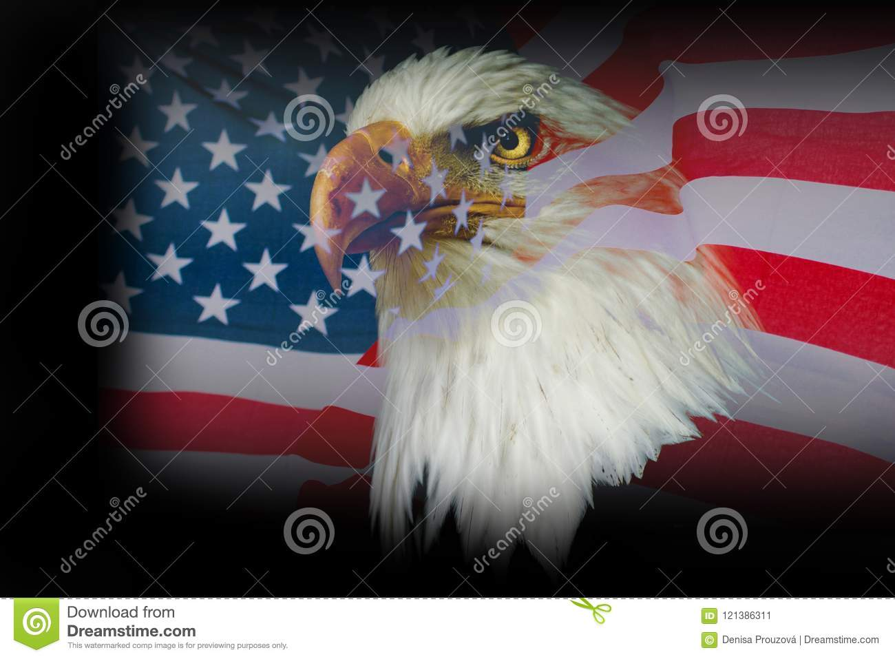 Wallpaper American Eagle With Usa Flag Stock Image Image Of