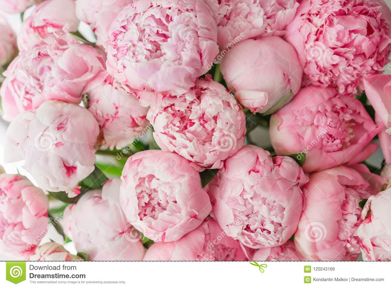 Wallpaper lovely flowers pink peonies floral compositions wallpaper lovely flowers pink peonies floral compositions daylight mightylinksfo