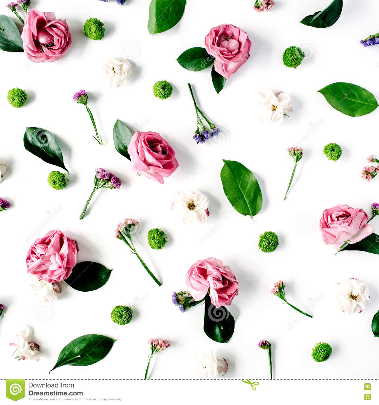 Wallpaper Texture Pink Roses And White Flowers On White Background