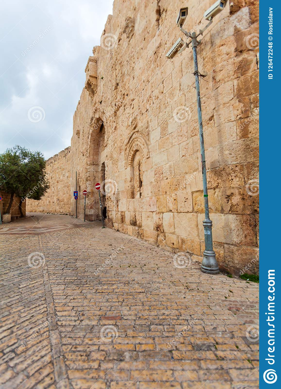 Walls of Ancient City and palm tree, Jerusalem