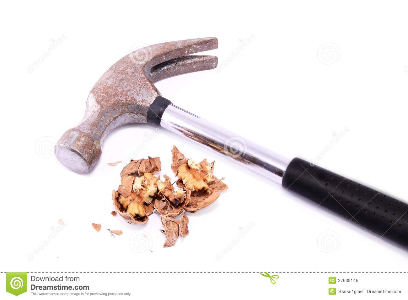 Walnut crushed by a hammer