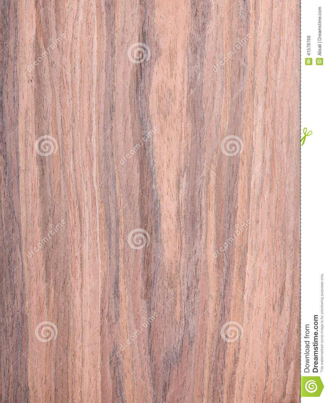 Walnut, Wood Grain, Natural Rural Tree Background Stock ...