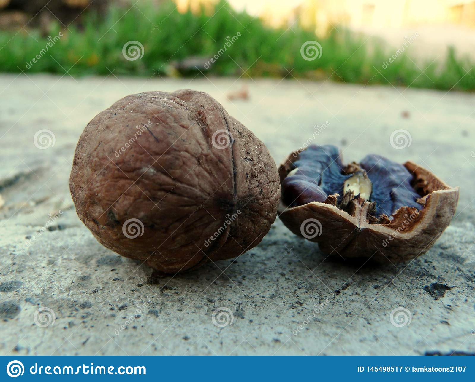 Walnut for the best life
