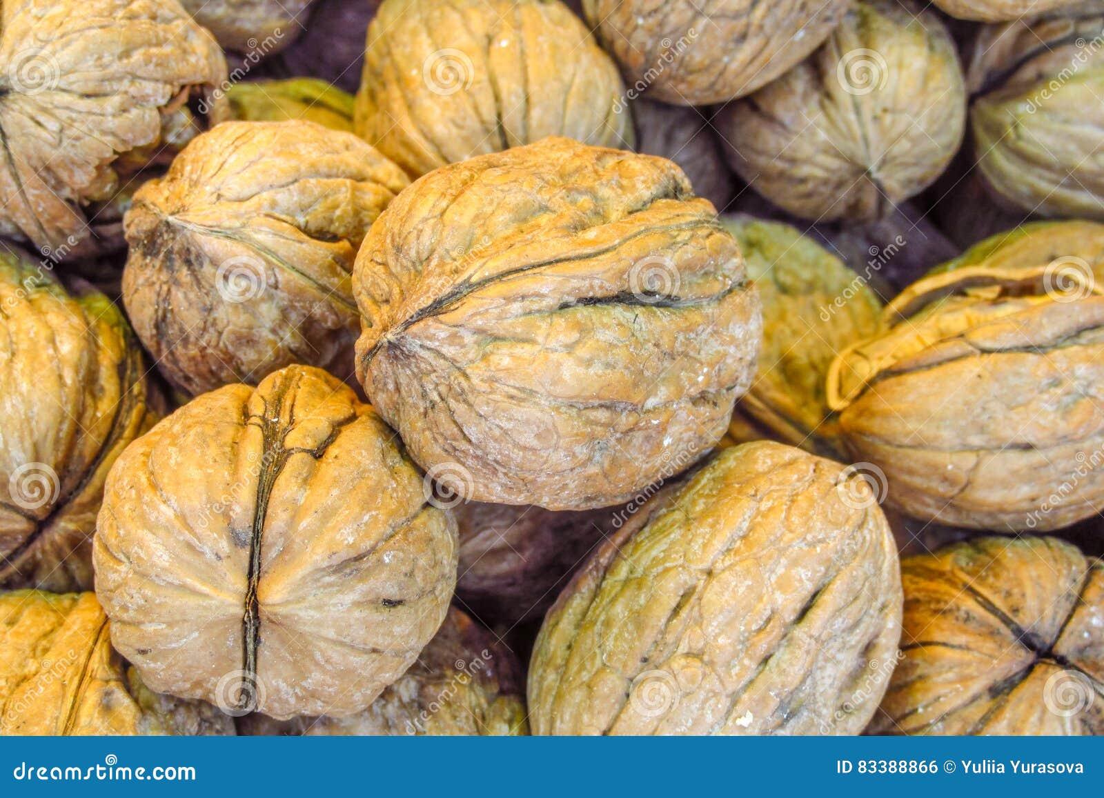 Walnuts pattern