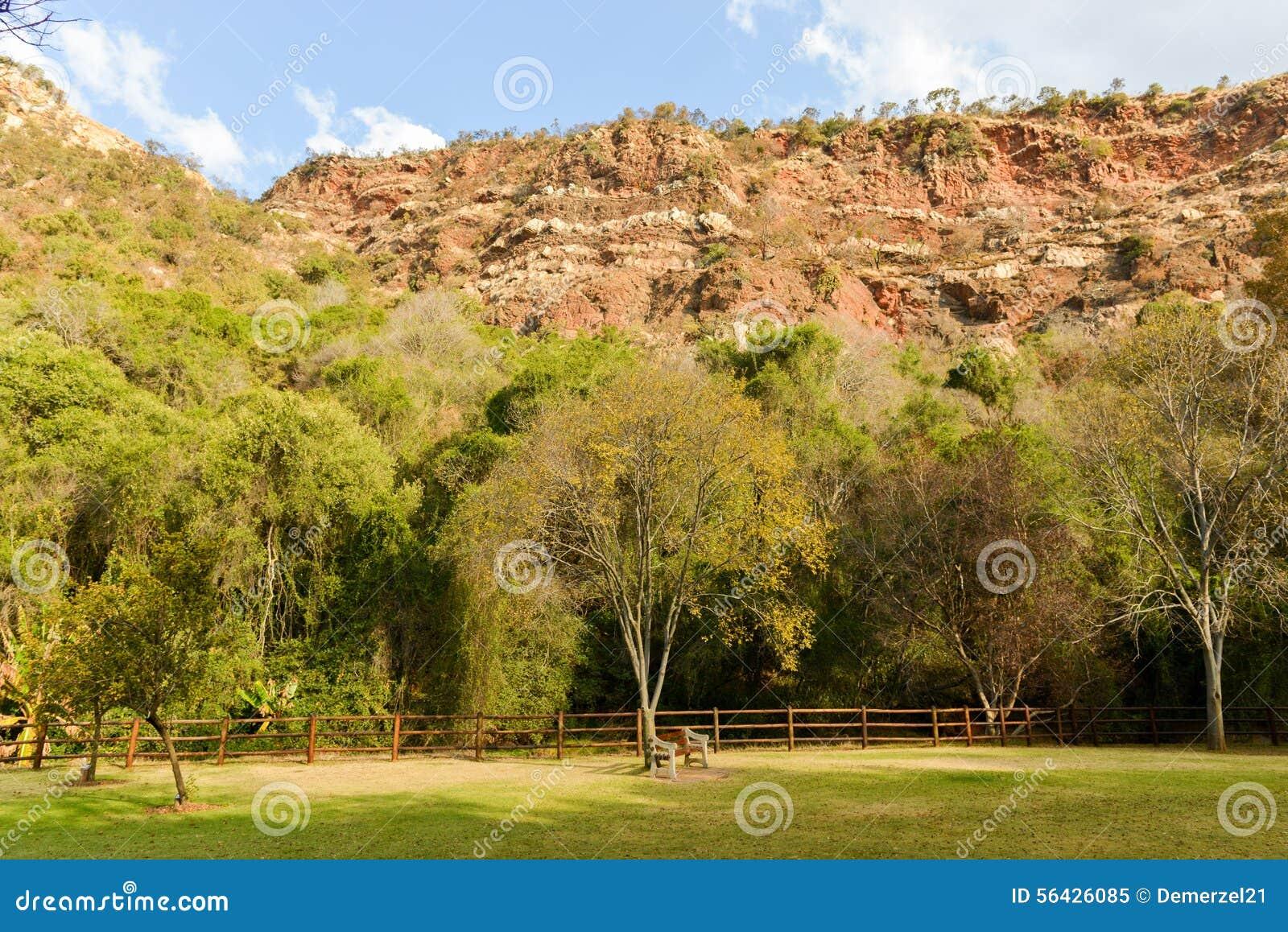 Walter Sisulu National Botanical Garden Stock Image - Image of ...