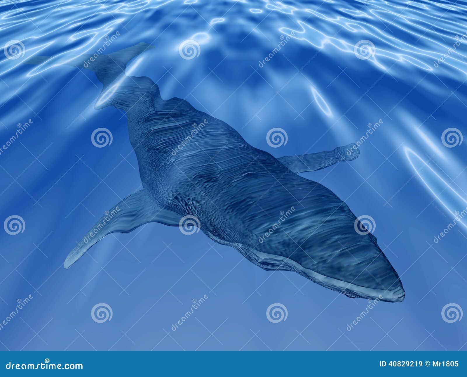 Walvis in het diepe blauwe overzees