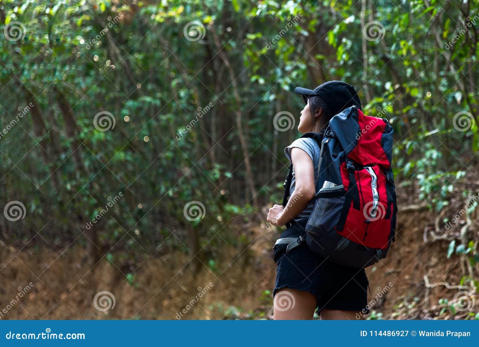 Wandelaar Aziatische jonge vrouwen die in nationaal park met rugzak lopen Vrouwentoerist het gaande kamperen