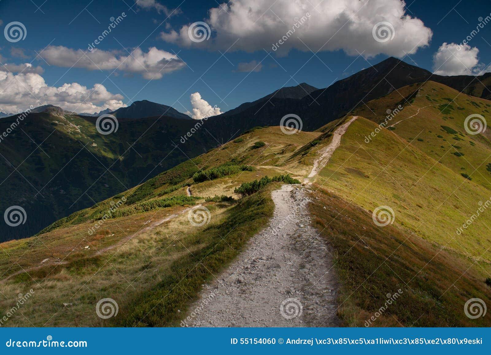 Wandelingssleep op grasrijke bergrand