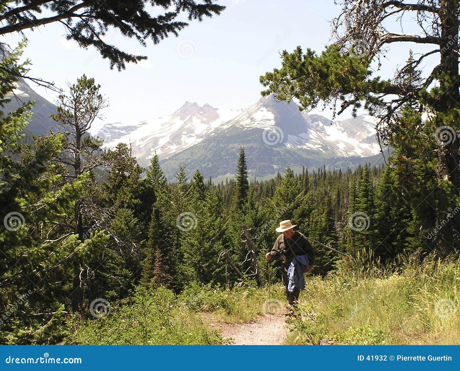Download Wanderer auf Pfad stockfoto. Bild von eingebürgert, mann - 41932