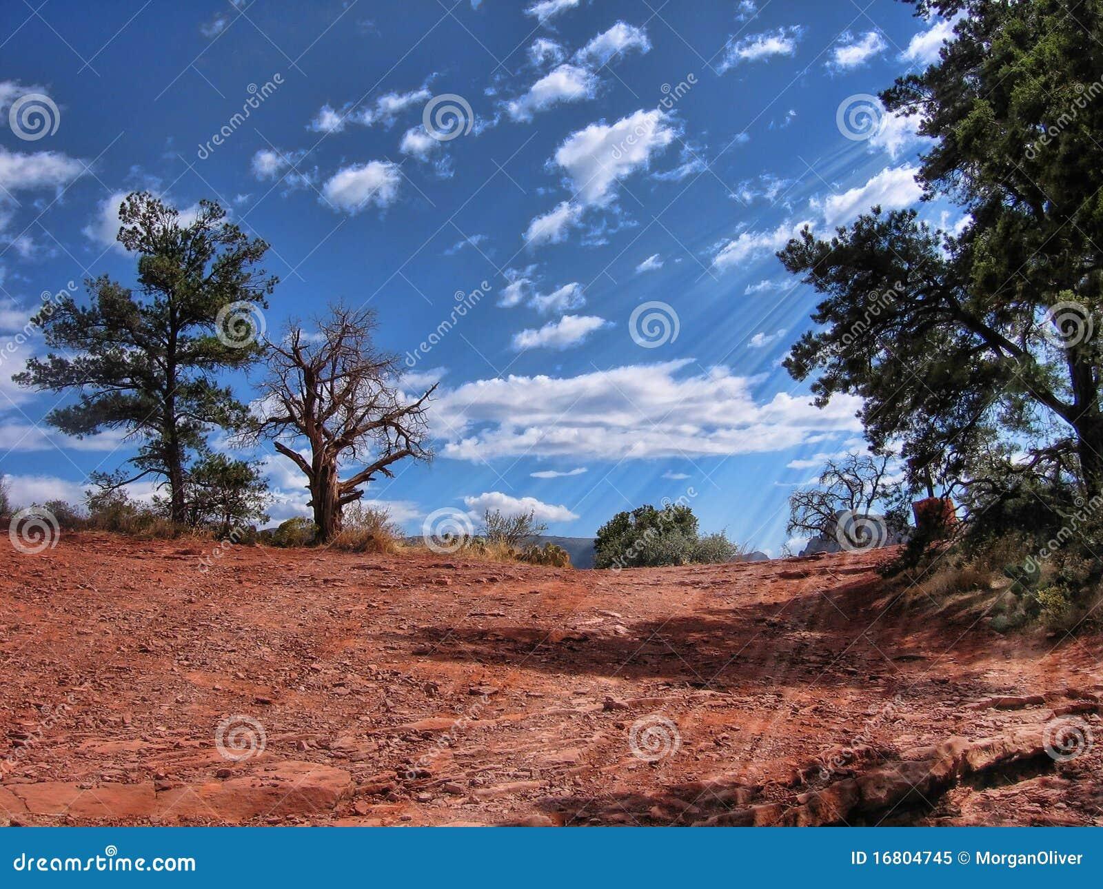 Wandern von Landschaft